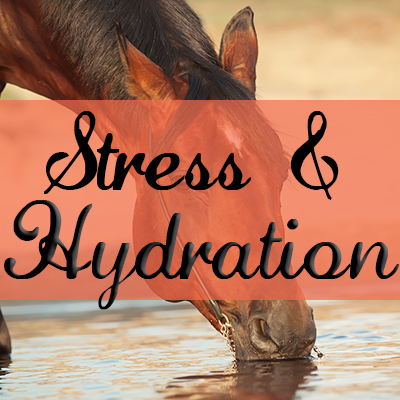 Stress & Hydration